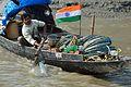 Crab Catcher - River Ichamati - Taki - North 24 Parganas 2015-01-13 4459.JPG