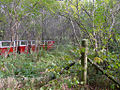 Crossford Model Railway (2939008515).jpg