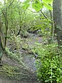 Cunningham Brook - geograph.org.uk - 464507.jpg