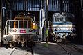 Dépôt-de-Chambéry - Rotonde - Locomotives - IMG 3647.jpg