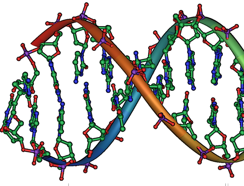 File:DNA stub.png