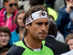David Ferrer - Roland-Garros 2013 - 014.jpg