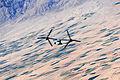 Defense.gov photo essay 110308-D-XH843-025.jpg