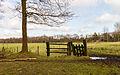 Delleboersterheide – Catspoele Natuurgebied van It Fryske Gea. Omgeving van het heideveld 003.jpg
