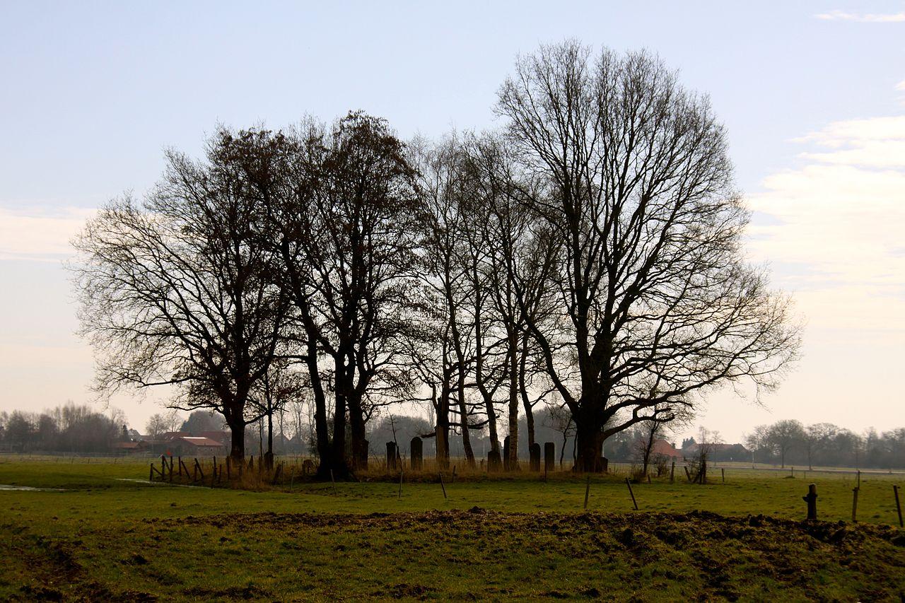 Der Jüdische Friedhof smarlingen94.jpg