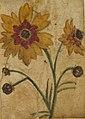 Desenho de Planta - Álbum M A B A D - Prancha N.7 (5), Acervo do Museu Paulista da USP (cropped).jpg
