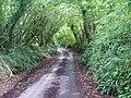 Devon Lane, Arcadia Elburton - geograph.org.uk - 55689.jpg