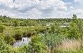 Diakonievene. Natuurgebied van It Fryske Gea. 31-05-2019. (actm.) 05.jpg