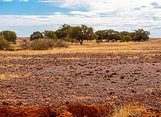 Diamantina National Park Protected area in Queensland, Australia