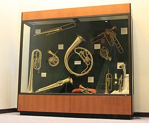 Stearns Collection of Musical Instruments - Image: Display of the Stearns Collection of Musical Instruments University of Michigan