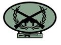 Distintivo Tirador Selecto.png