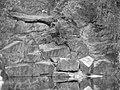 Dittmannsdorfer Steinbruch - panoramio.jpg