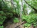Dobryanskiy r-n, Permskiy kray, Russia - panoramio (240).jpg