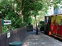 Dolgoch Falls Station, Talyllyn Railway - geograph.org.uk - 214255.jpg
