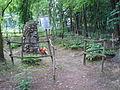 Dom pomocy społecznej w Zielonce - ogród (5).JPG