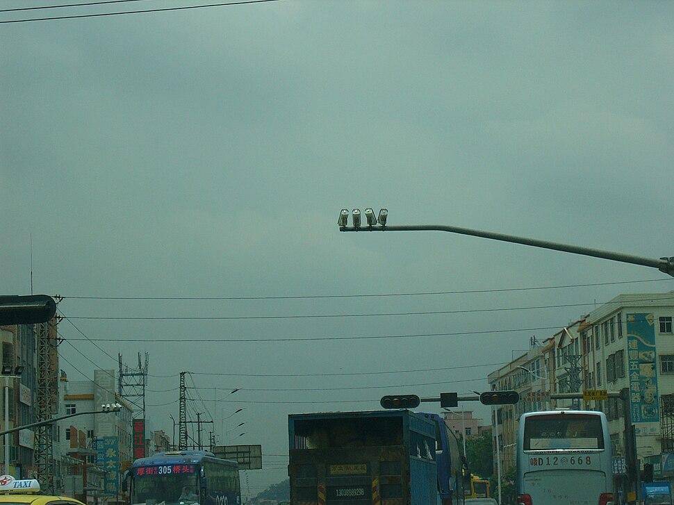 Dongguan Traffic Cameras