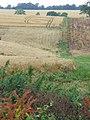 Downland Farming - geograph.org.uk - 907620.jpg