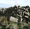 Dry stone wall, Birch Close Lane, Bingley - geograph.org.uk - 750336.jpg