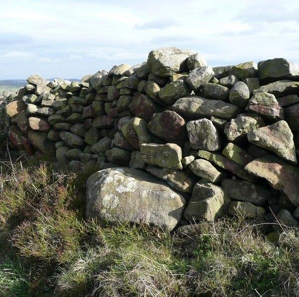 File:Dry stone wall, Birch Close Lane, Bingley - geograph.org.uk - 750336.jpg