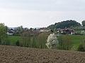 Duerrmaul Haselbach von Osten.jpg