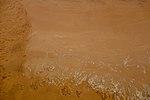 Dunes and Rocks (37730855992).jpg