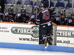 South Carolina Stingrays captain Matt Scherer returns to the bench following a line change. Stingrays vs. Everblades, 2-10-10.
