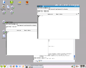 X session manager - A session with two instances of xedit open on different files