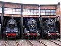 EisenbahnmuseumBwDresdenAltstadtBaureihen19und03und01.JPG