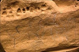 Laghouat Province - Image: El Krotara.cl.1