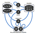 Elementary particle interactions in the Standard Model hy.png