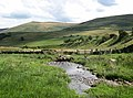 Elsdon Burn - geograph.org.uk - 1438733.jpg