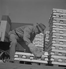 Enormous asbestos mittens must be worn by men handling the thousands of hot magnesium ingots 8b08228v.jpg
