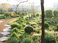 Enslyon 80581 ENS-Lyon-jardin-de-la-communication-035.jpg