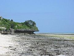 Erosion exposed at low tide.jpg