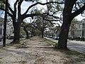 EsplanadeNeutralGround1.jpg