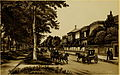 Esplanade Avenue Scene New Orleans 1885.jpg