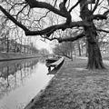 Exterieur OVERZICHT - Utrecht - 20299777 - RCE.jpg