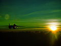 F-14A Tomcat flying against a green sunset.jpg