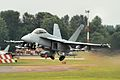 F-A-18F Super Hornet - RIAT 2014 (14650661760).jpg
