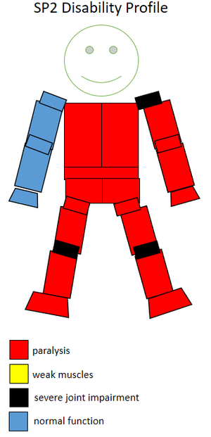 T52 (classification) - Functional profile of a wheelchair sportsperson in the F2 class.