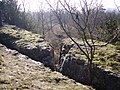 Fairy Steps - geograph.org.uk - 328893.jpg