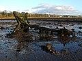 Fallen boundary marker - geograph.org.uk - 1587207.jpg