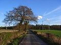 Farm road, Kenney's Farm, Arborfield - geograph.org.uk - 1253541.jpg
