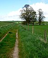 Farm track north of Cokers Frome - geograph.org.uk - 786646.jpg