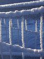 Fence details - 4 (3184628254).jpg
