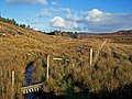 Fence on the moor - geograph.org.uk - 1057721.jpg