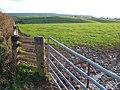 Field above Thurlestone - geograph.org.uk - 281660.jpg
