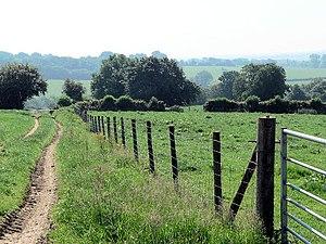 English: Field boundaries