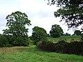 Fields near Oathill - geograph.org.uk - 500240.jpg