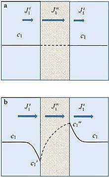 Concentration polarization - Wikipedia
